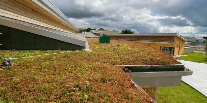 GUEST BLOG: Green Infrastructure - a growing need - Natural Capital