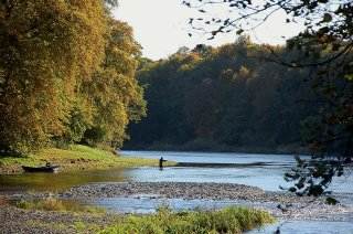 river tweed angling